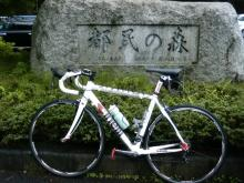 hamukenのブログ-都民の森
