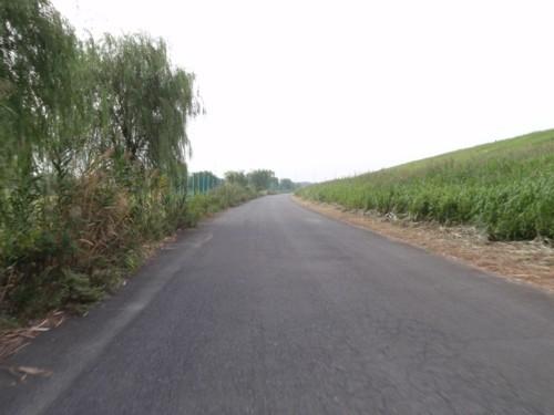 hamukenのブログ-荒川サイクリングロード