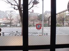 hamukenのブログ-市谷のTullY'sの桜