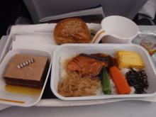 hamukenのブログ-機内食2