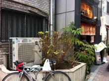 $hamukenのブログ-鯛焼き屋さん